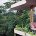 The Planchonella House by Jesse Bennett Architect.