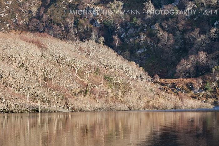Caragh Lake Foto workshop Irland
