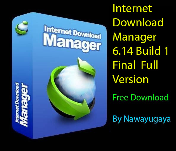 internet download manager full version with crack free download for windows 8.1