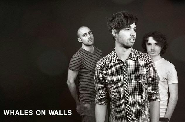 whales on walls promo disco