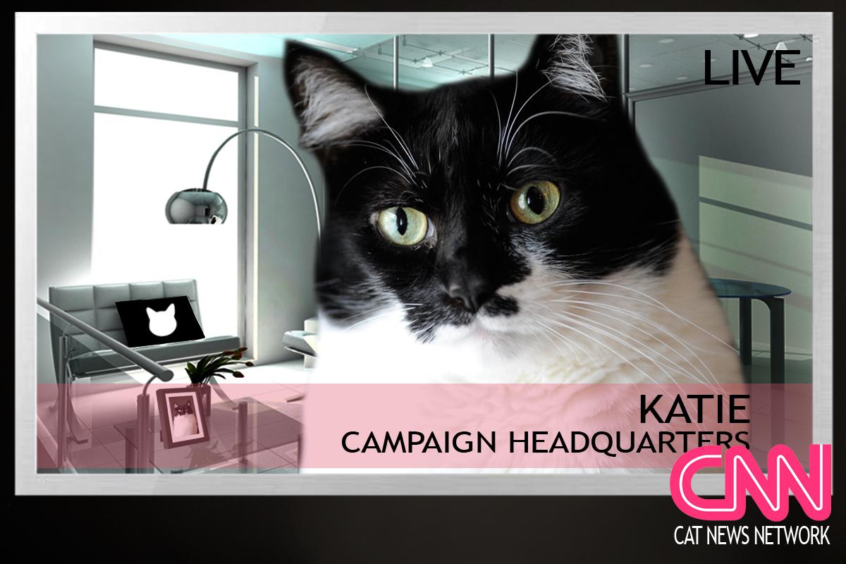 GLOGIRLY Cat Ruler The World Campaign Debate