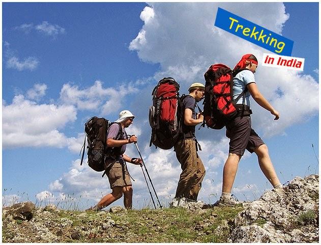 the himalaya trekking