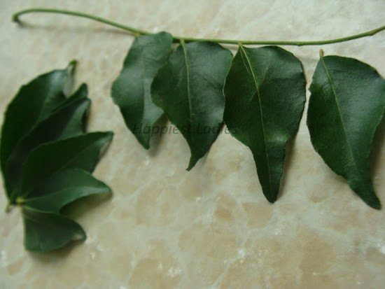 Curry Leaves Hair and Skin Benefits