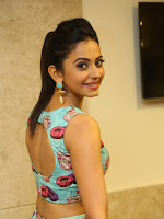 Rakul Preet photos at Pandaga chesko Platinum-cover-photo
