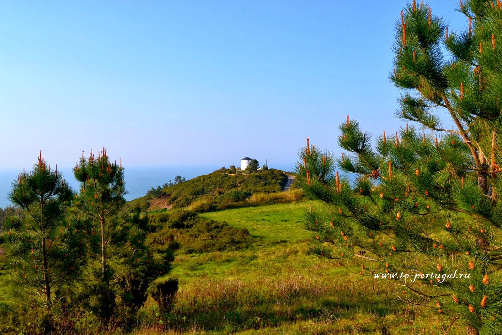 португальская природа
