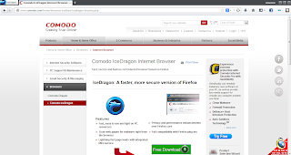 After the installation, the IceDragon browser