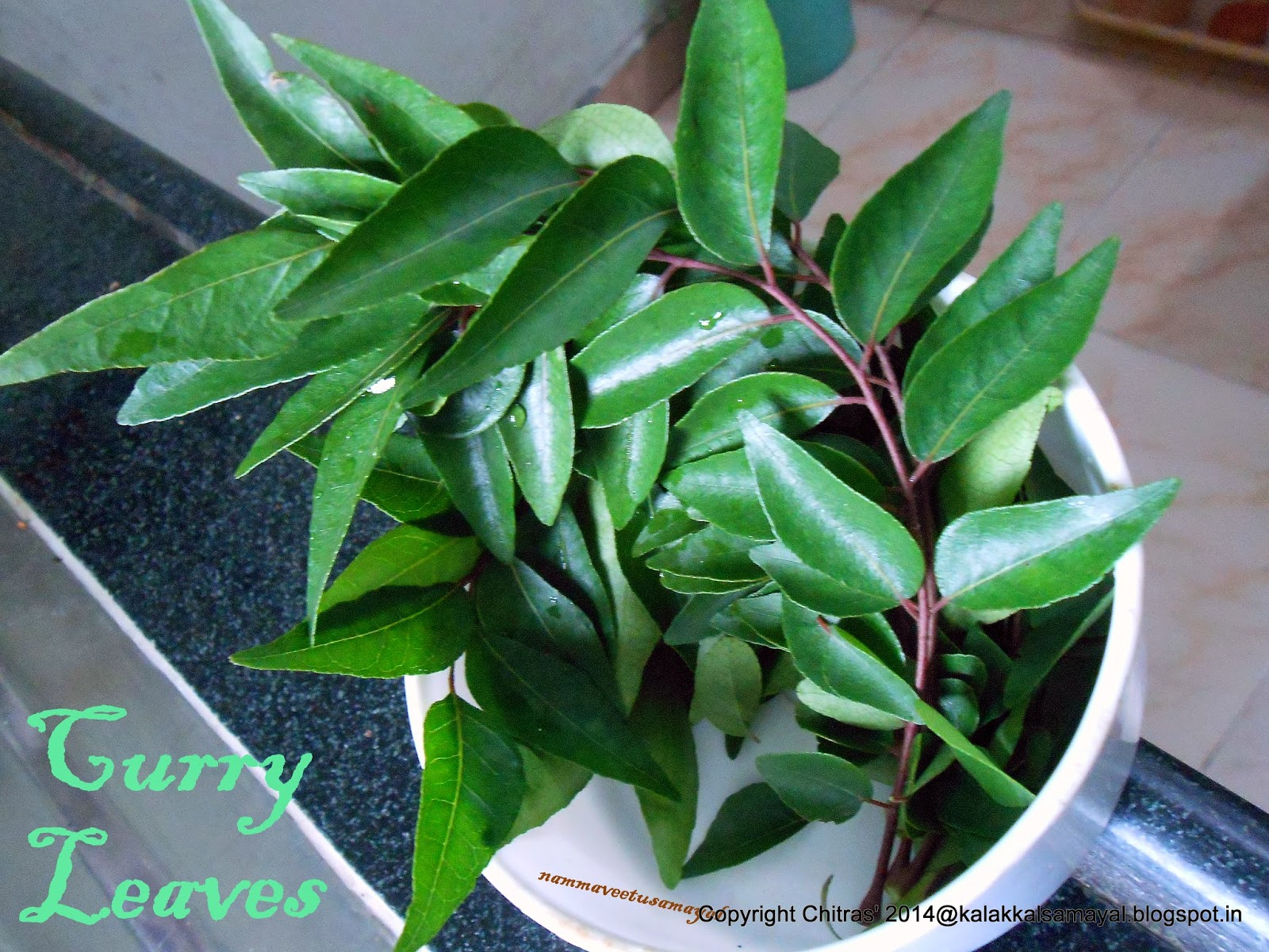Tamil : Karuvaeppilai; English : Curry leaves