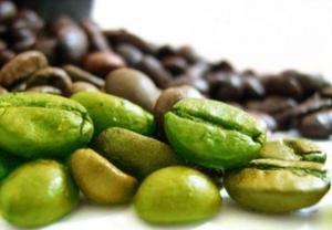 Green-Coffee-Beans - القهوة الخضراء غير المحمصة تساعد فى إنقاص الوزن