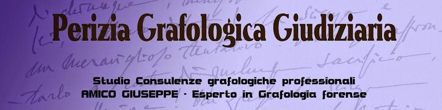 PERIZIA CALLIGRAFICA - PERITO GRAFOLOGO - PERIZIA GRAFOLOGICA