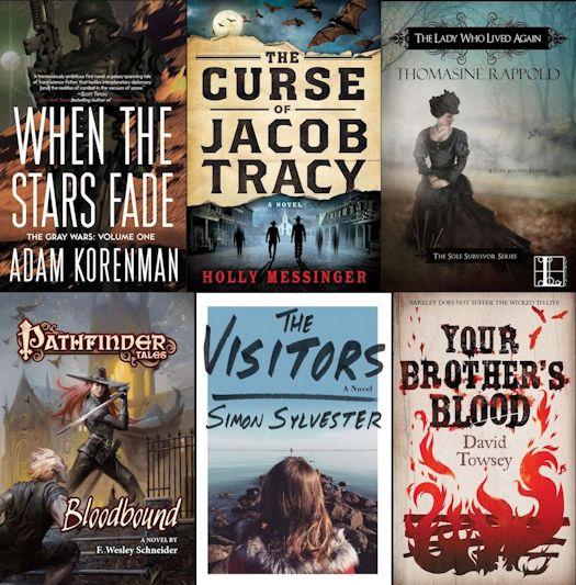 2015 Debut Author Challenge Cover Wars - December Winner