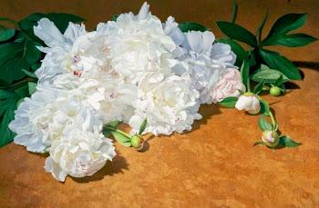 Pinturas de Flores Hiperrealistas