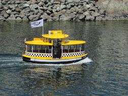 "Un ""water taxi"""