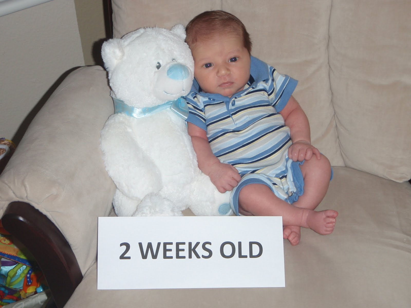 Constipated 6 Month Old 48 Images New Mum