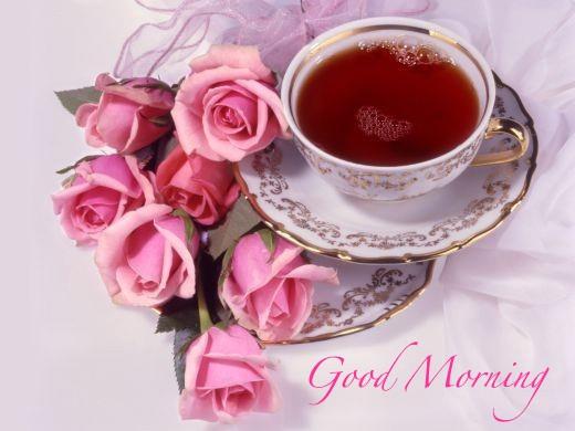 Good Morning Ji : Dania ji sms shayari good morning