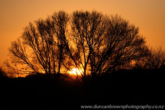 Just to prove I do get up early, sometimes photograph