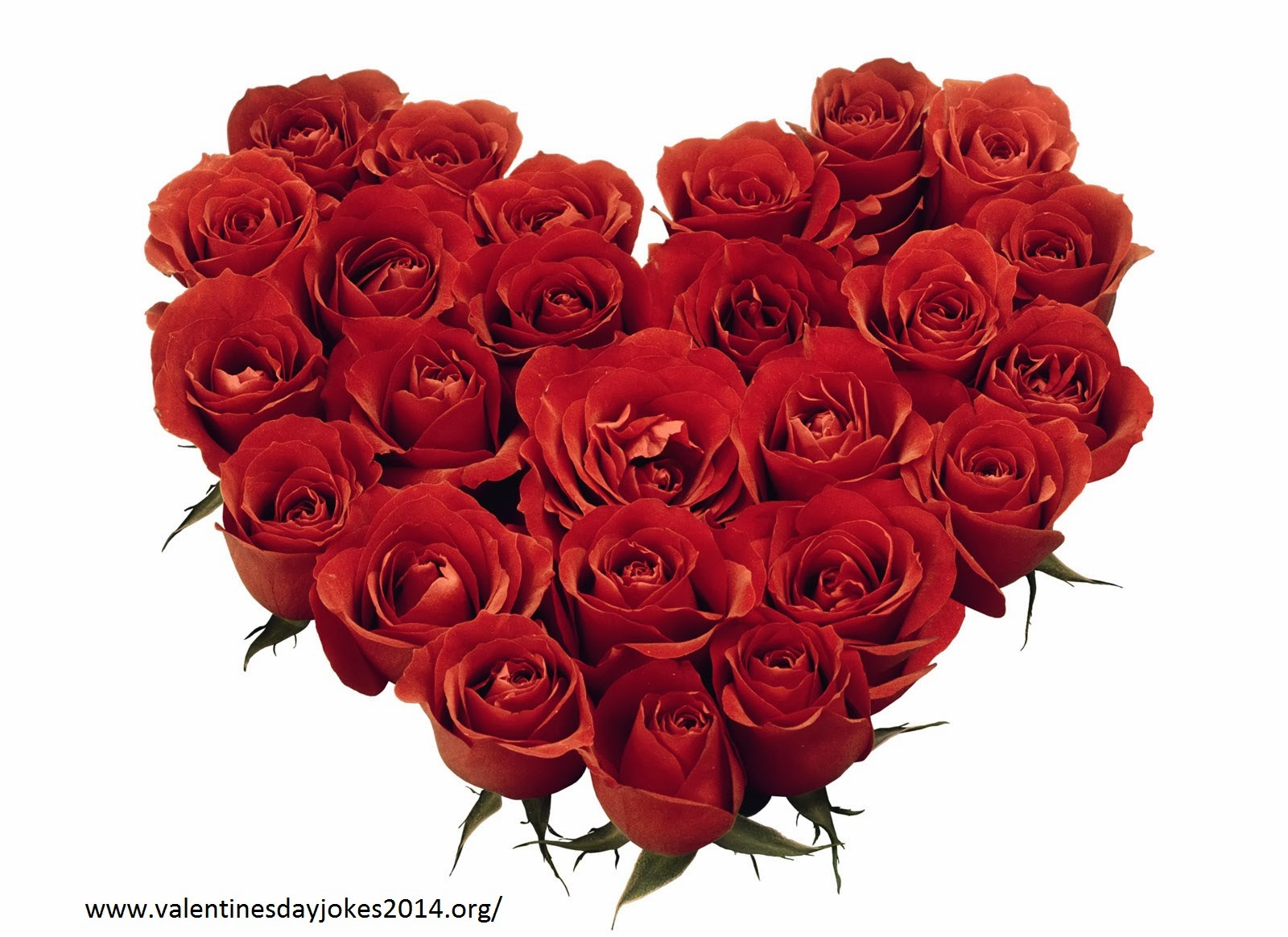 Happy rose day greeting messages wishes for friends and lover m4hsunfo