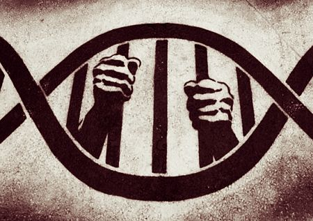 Comportamientos, rasgos y genes