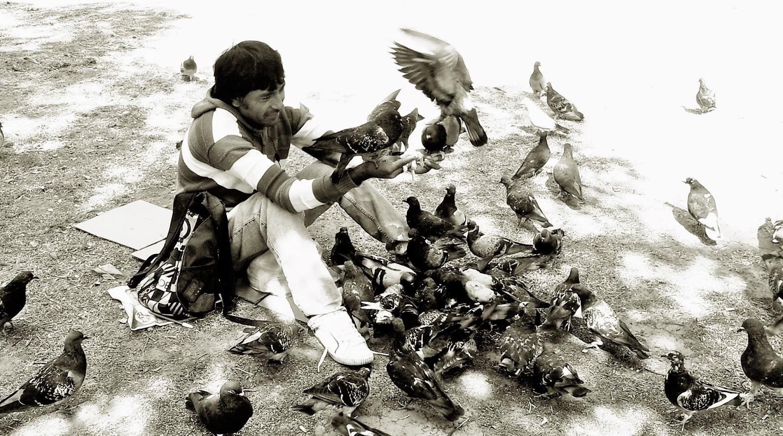 Con palomas