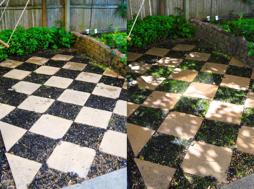 the checkerboard garden ForCheckerboard Garden Designs