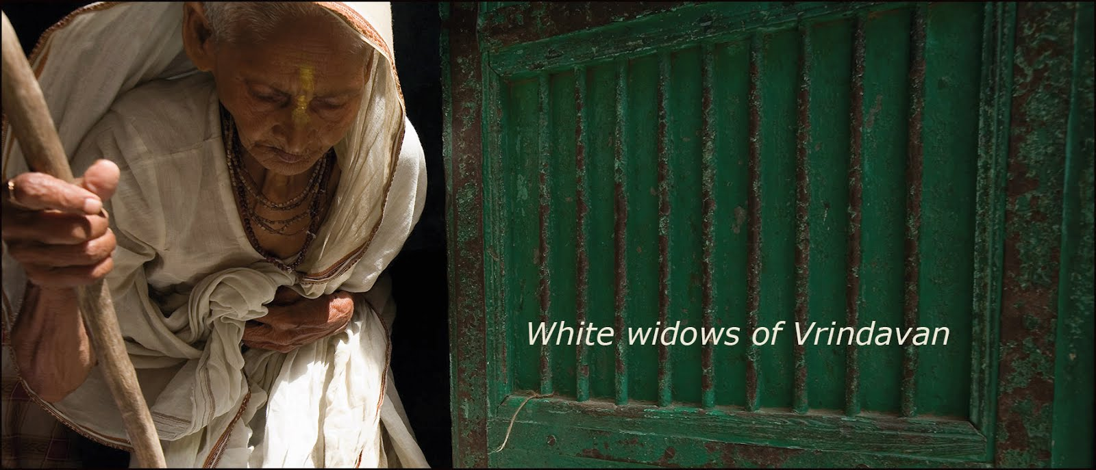 White Widows of Vrindavan.