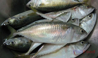 Hasa-hasa also called kabayas - Philippine fish