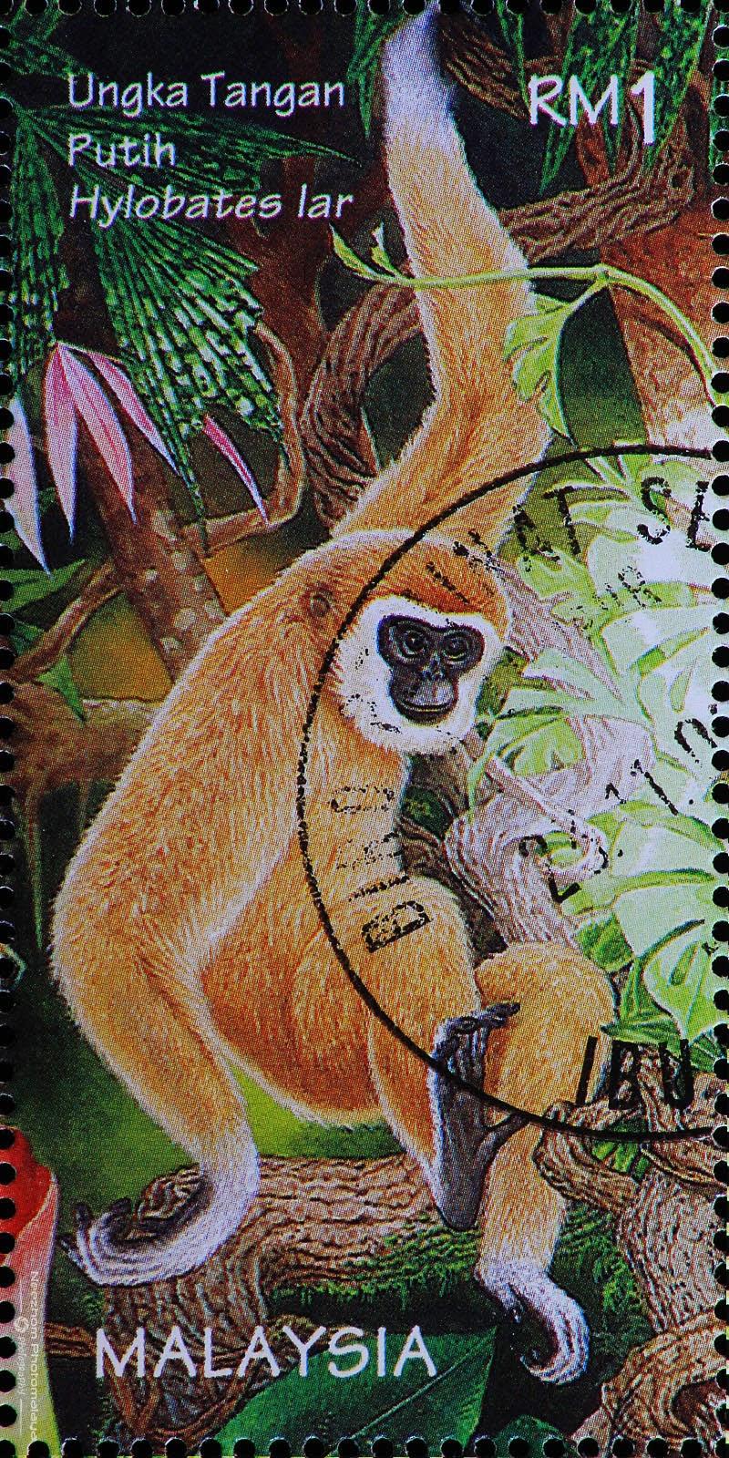 Malaysia 1996 Wildlife stamps - Lar Gibbon / Ungka Tangan Putih (Hylobates lar) RM1