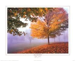 foto de paisaje hermoso