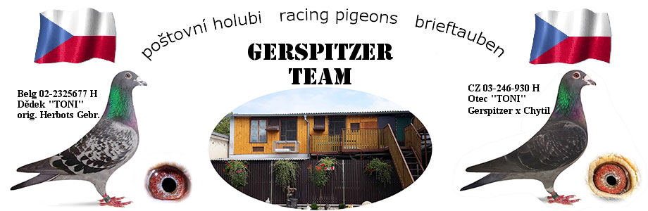 Poštovní holubi Gerspitzer A+M a J+J