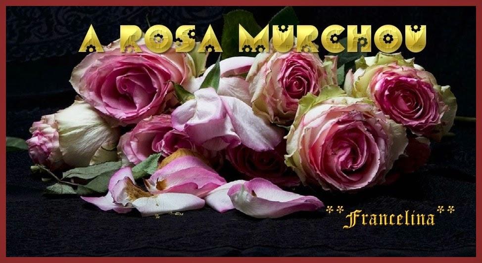 A Rosa Murchou