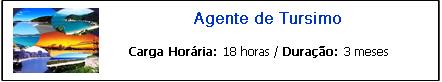 AGENTE DE TURISMO