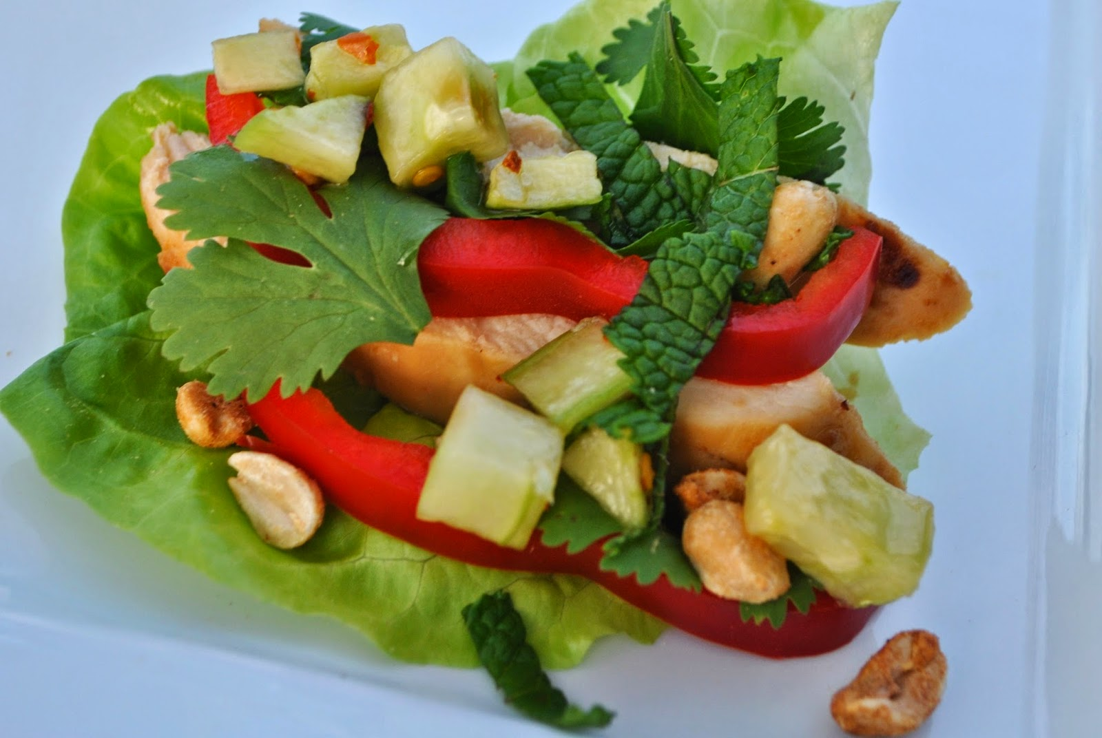 THAI STYLE CHICKEN IN LETTUCE LEAVES - Fayetteville Pilates and Barre ...