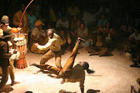 The beauty of capoeira