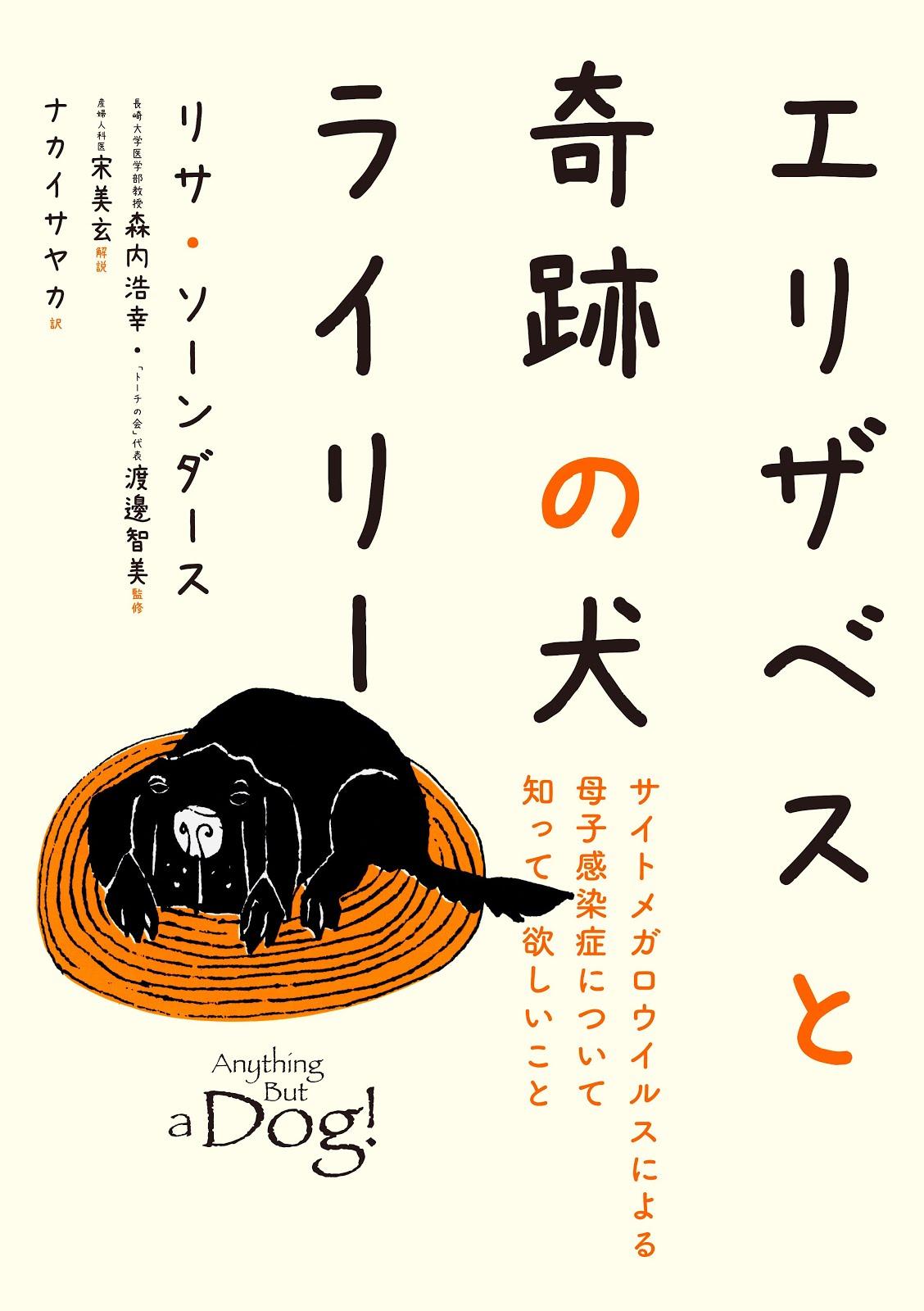 Japan Translates U.S. CMV Mom's Book