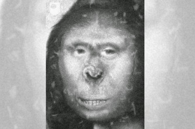 Saintis cuba kuak misteri makhluk Yeti menerusi ujian DNA