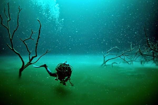 Dunia Adalah Ditemukannya Sungai Bawah Laut Cenote Angelica Di Daerah