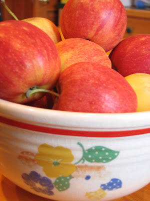 apples in vintage bowl, picture of apples in bowl