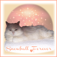 Goodbye Sweet Snowball