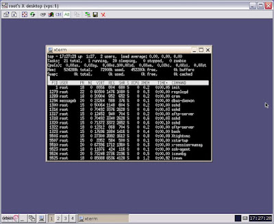 installed icewm debian server