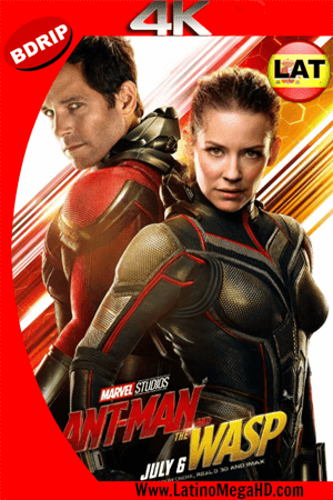 Ant-Man and The Wasp. El Hombre Hormiga y La Avispa (2018) Latino Ultra HD BDRIP 2160P ()