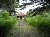 Uma quinta ao abandono
