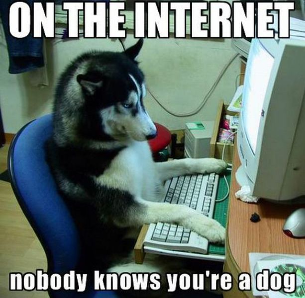 [Image: on_the_internet_nobody_knows_you_re_a_dog.jpg]