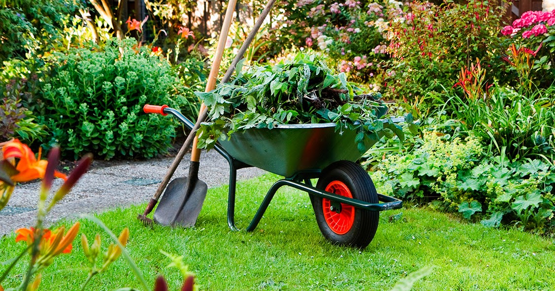 Beneficios ytrucos tiles de jardineria casas ideas for Utiles de jardineria