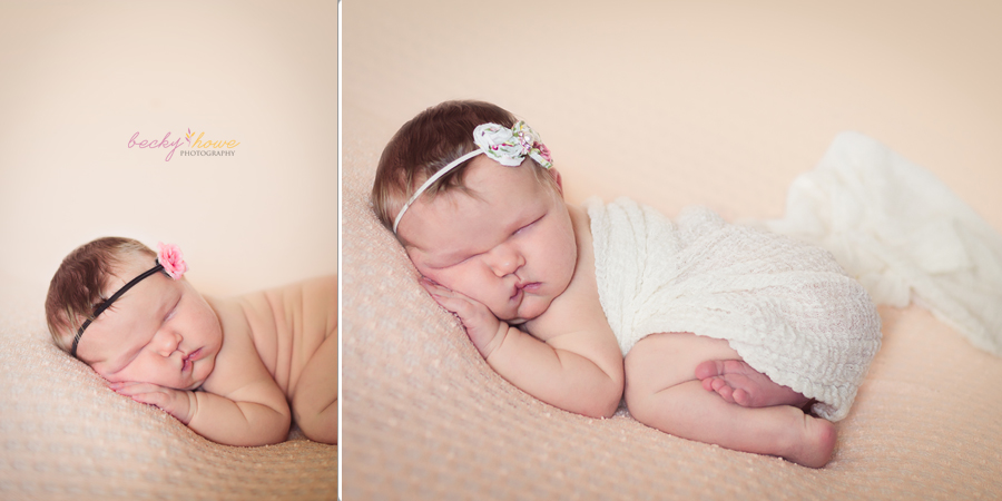omaha newborn professional photography sleeping newborn posed