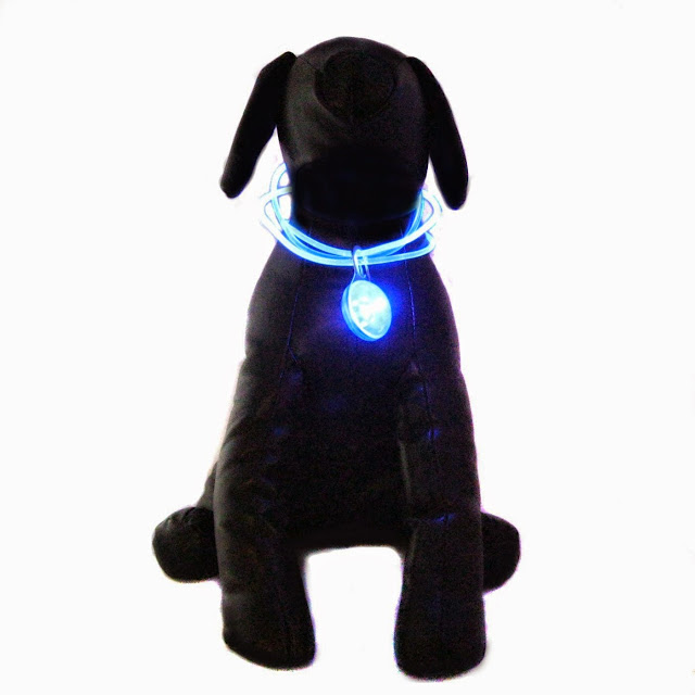 Coolest and Awesome Dog Collars (15) 7