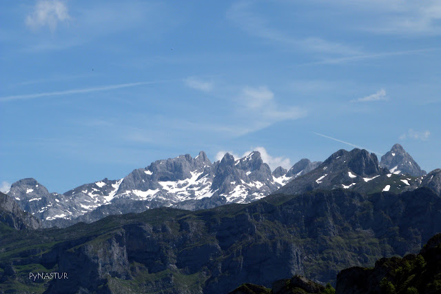 Picos de Europa National Park from Peloño Forest Asturias Spain