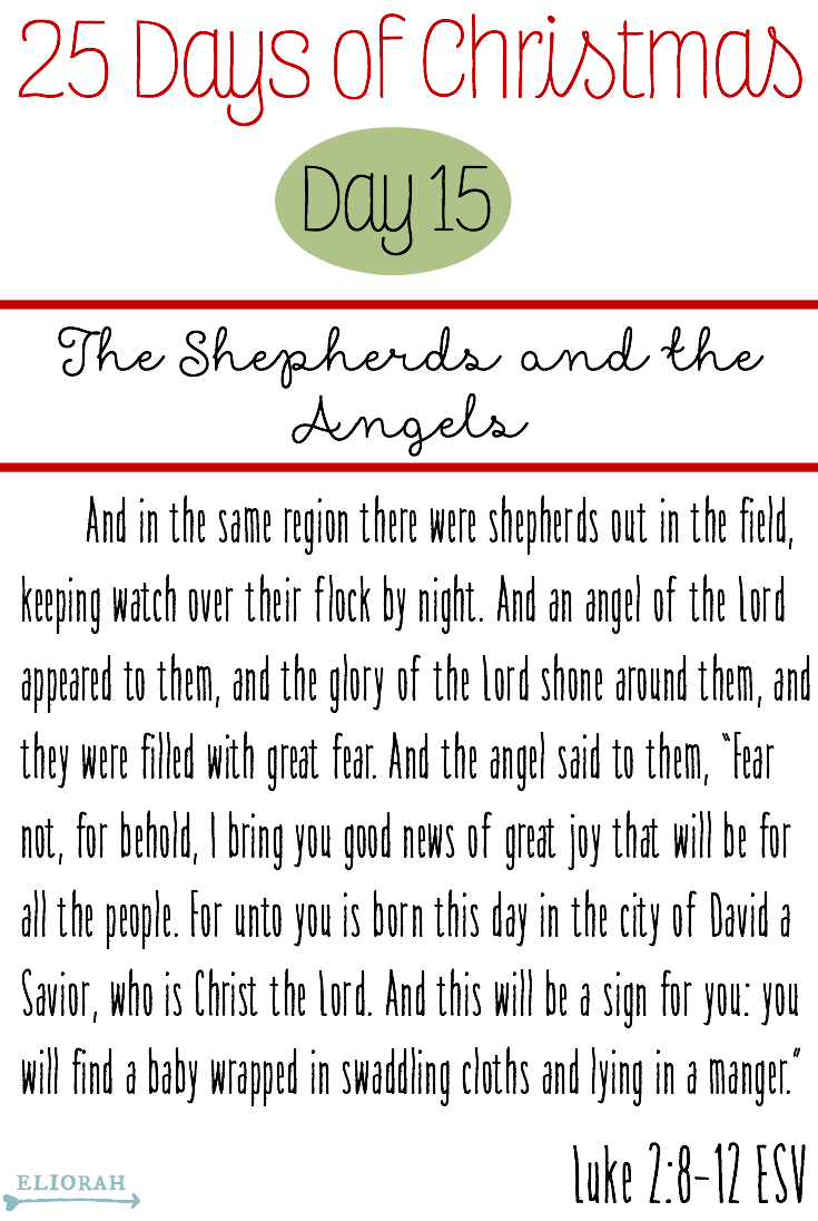 25 Days of Christmas: (Day 15) Luke 2:8-12