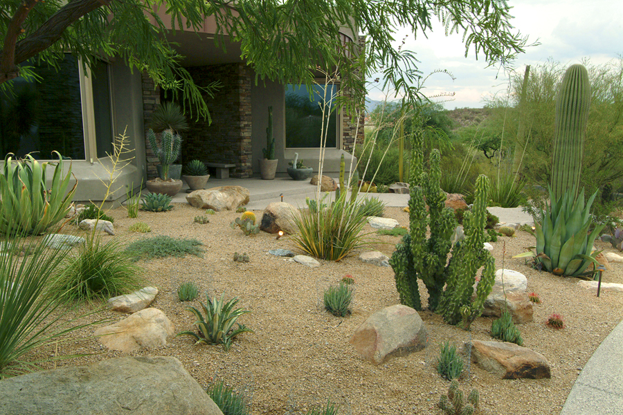 Ground effects landscaping of tucson for Landscape design tucson