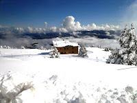 Imatges de l'última nevada del març a Coll de Pal