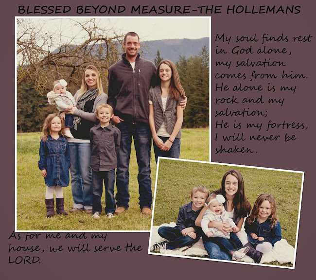 Blessed Beyond Measure-The Holleman Family