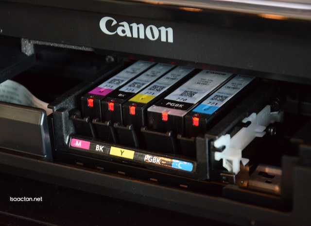 Ink cartridges on the MG5570